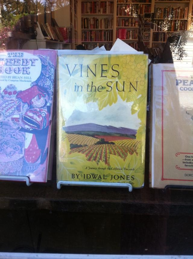 Vines in The Sun